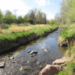 A Trail Oasis Smack in between DTC and Downtown Denver