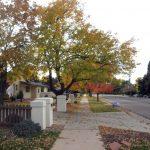 Southmoor Neighborhood Denver Walk Hike
