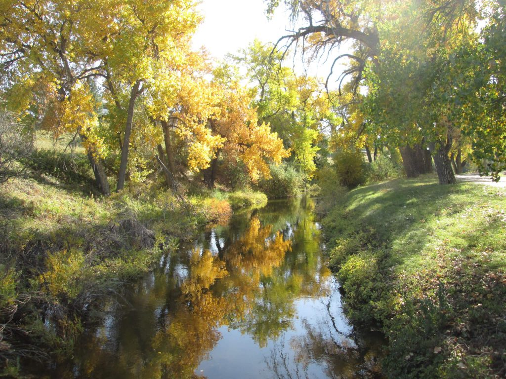 Three Fall Color Hikes in Denver