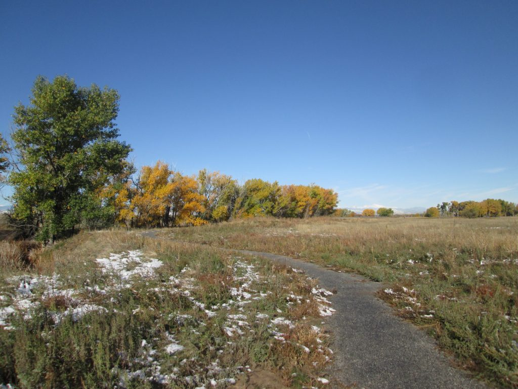 First Creek at DEN Trail